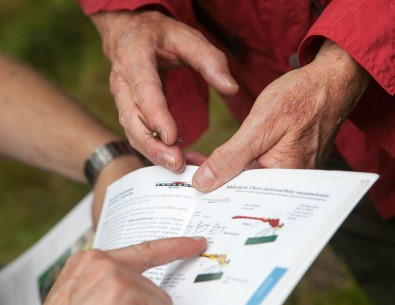 A hand holding a recently captured dragonfly over an open field guide that provides information on the species.